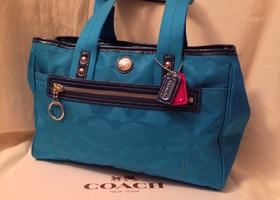 Mint Coach Daisy Signature Satchel Tote
