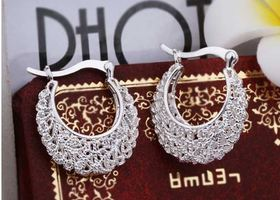 Huggie Fashion Earrings