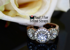 5.10tcw Sz 5-10 Vintage-Inspired Rose Gold gp Halo Ring