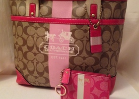 2pc Coach Heritage Stripe Tote + Mini Skinny Wallet