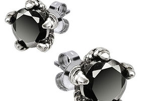 Stainless Steel Claw Black CZ Earrings