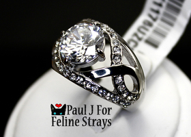 5 6 7 8 10 7.87tcw Diamond Cut AAA Grade CZ SS Ring