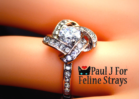 5 6 7 8  9 10 ~4.25tcw Rose Gold gp AAA CZ Ring
