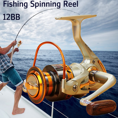 Fishing Spinning Reel Left/right Interchangeable 12BB Ball Bearing Saltwater/ Fr
