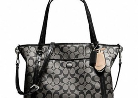 37NWT Coach Peyton Signature Pocket Tote