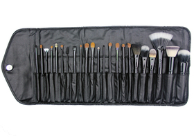 Crown Brush Set 23 PC. Professional Set w/Case