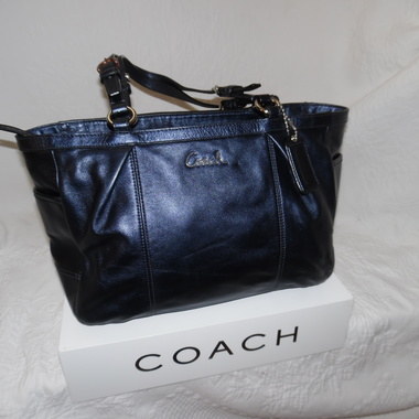 RARE Color Coach Metallic Leather East West Pleated Gallery
