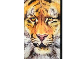 Martin Katon - Tiger Surprise - $480