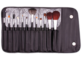 Crown Brush Set 12-Piece Professional Brush Set
