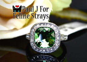 ✦ 5 6 7 8 9 10 Shifting Viridian Green CZ Halo SS Ring
