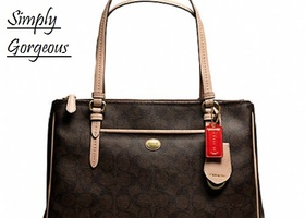 NWT Coach Peyton Brown Signature Double Zip Carryall