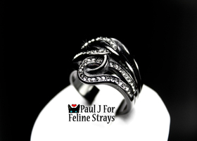 "✦ 5 6 7 8 9 10 ""Twisted Tails"" Black IP AAA CZ Ring"